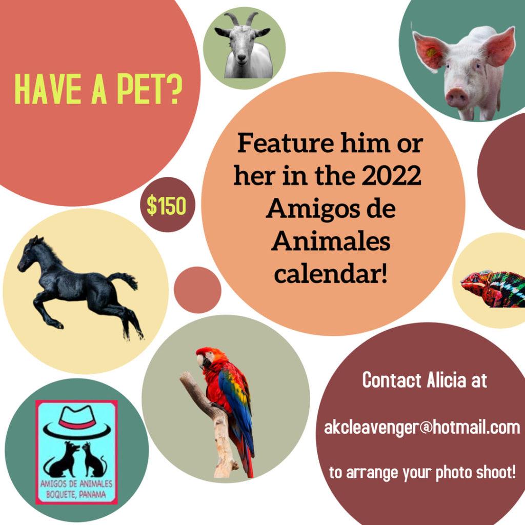 Calendar 2022 Amigos de Animales